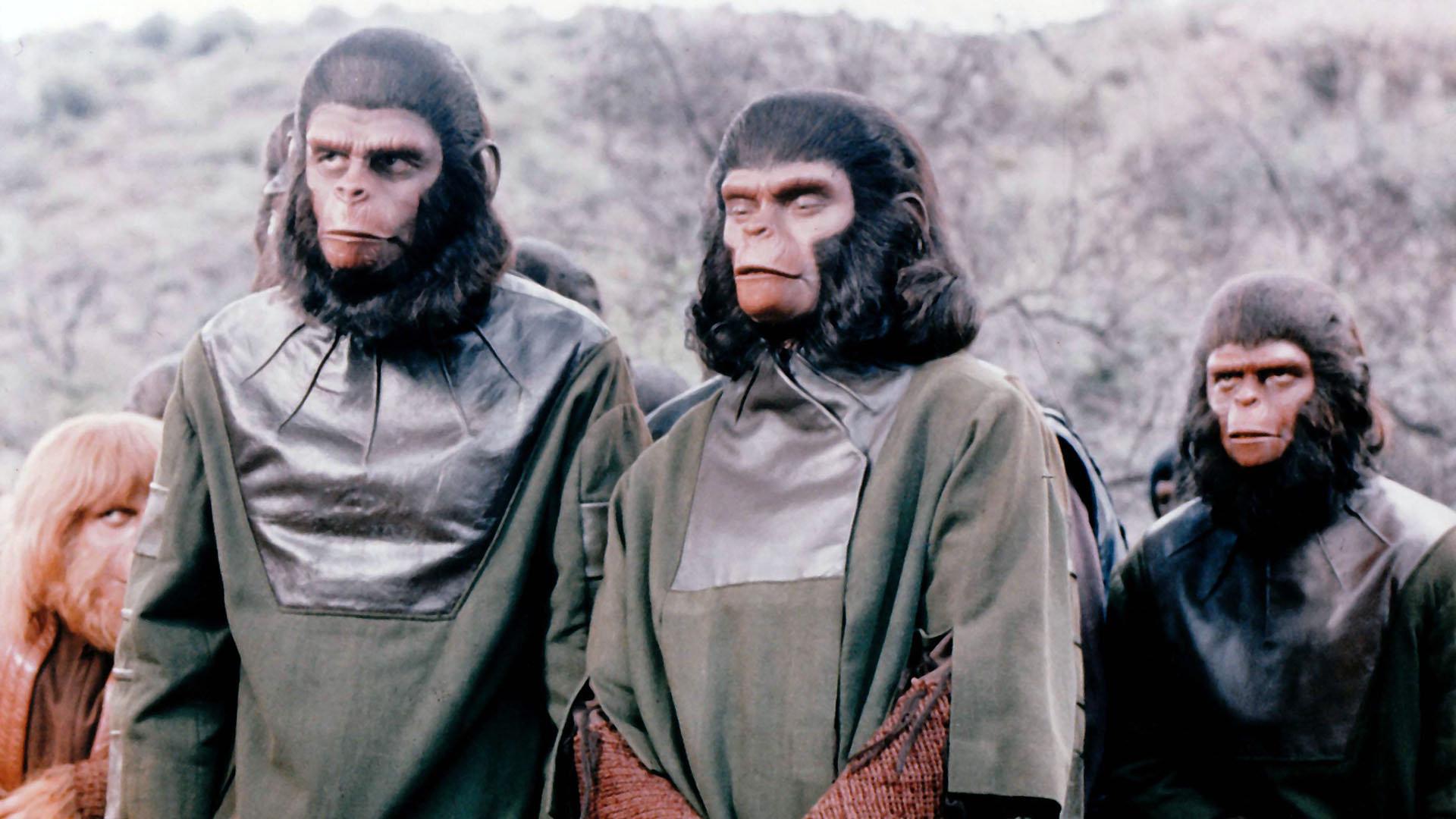 Sul pianeta delle scimmie, si chiamerà fattore umano?